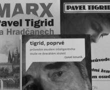 Tigrid
